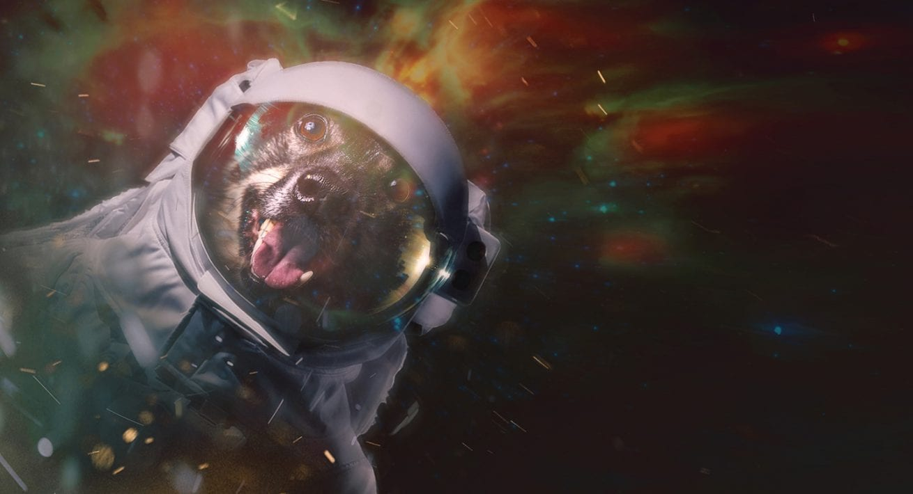 a photo of a dog wearing a spacesuit floating in space portrait baltimroe