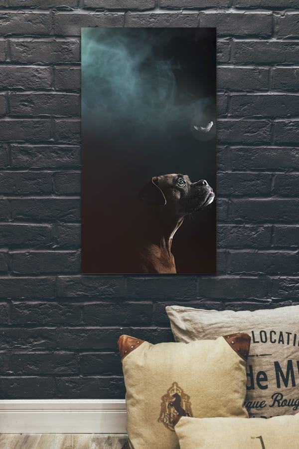 a memorial portrait of a terminally ill boxer looking at an angel feather