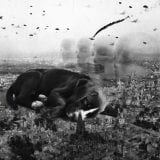 Puppy picture photo composite portrait of an adorable pit bull puppy sleeping in a busy battle scene. Bombers and fighter jets fill the sky with clouds, smoke and explosions. Giant white heads, ghostly transparemt in the background, look on over the napping dog but do nothing to help.