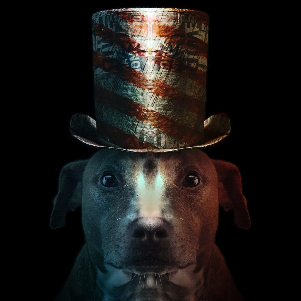 Pitbull Portrait of the Patriot from Paper Hats