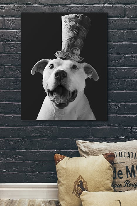 A photo of a piece of wall art featuring a white dog wearing a tophat
