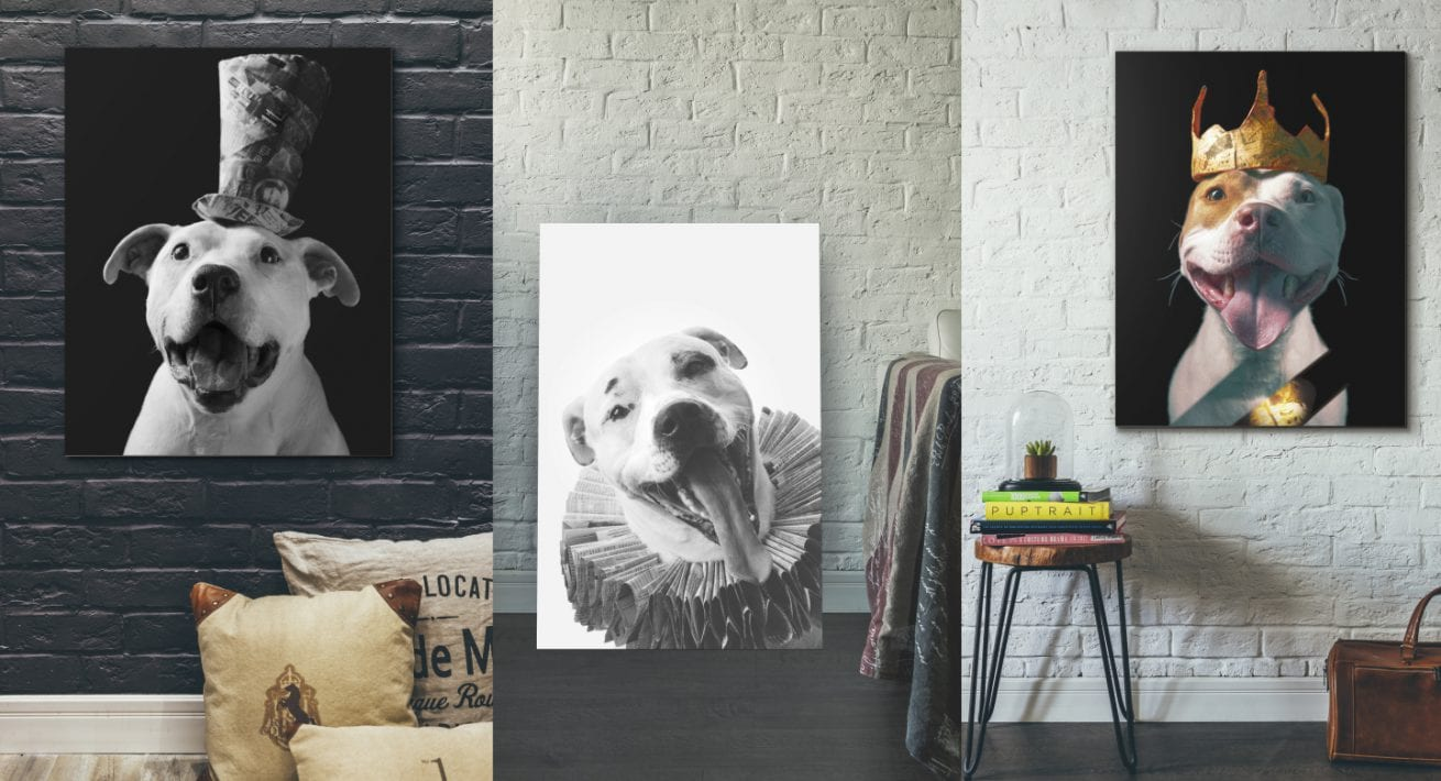Collection of contemporary dog portrait art from the Paper Hat sessions