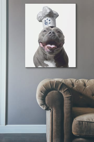 Creative ready to hang art featuring a smiling pitbull wearing a white chef hat with a blue paw print