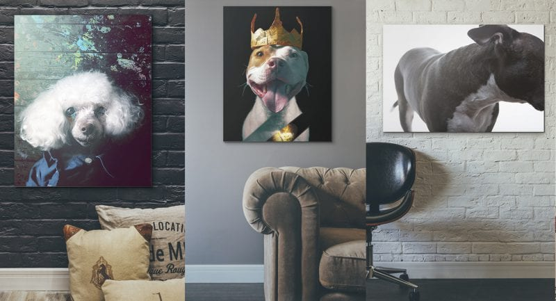Ready to hang gallery quality pet art