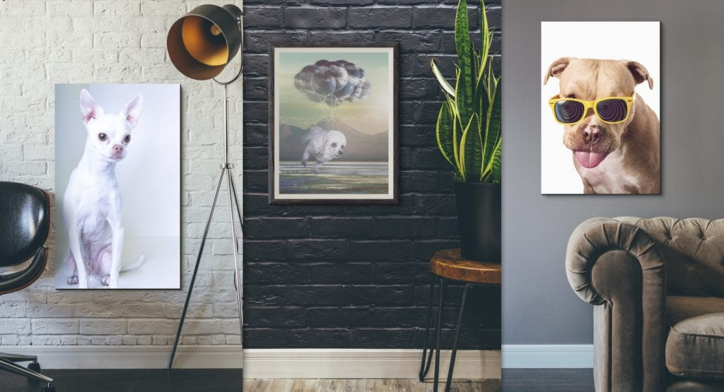 Dog art portrait print costs vary depending on size, mounting and framing.