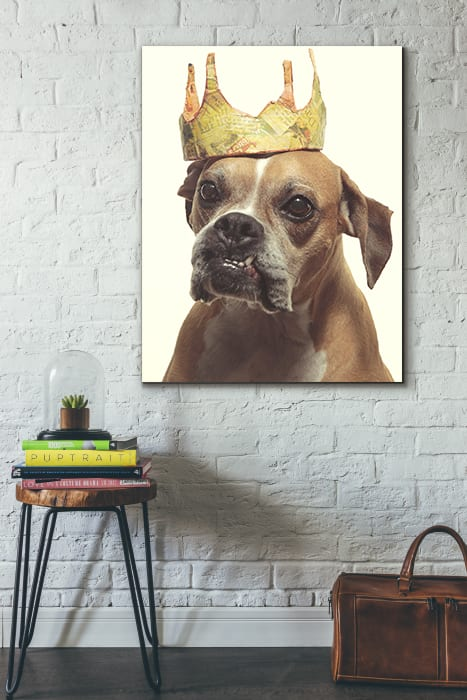 A goofy portrait of a boxer dog with a funny looking under bite