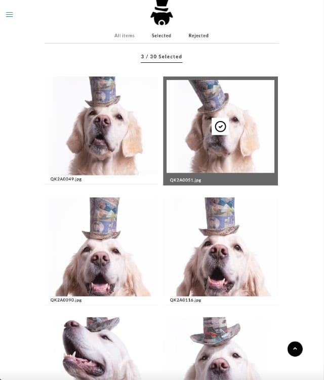 Screen shot of a the password protected proof section of the Puptrait Studio, a dog portrait photography company.