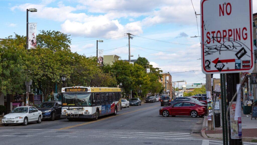 Photo of Hampden's Dog Avenue. A Baltimore City bus passes a fun photos of an American Bulldog and Chocolate Labrador Retriever along west 36th Street in Baltimore, Maryland.