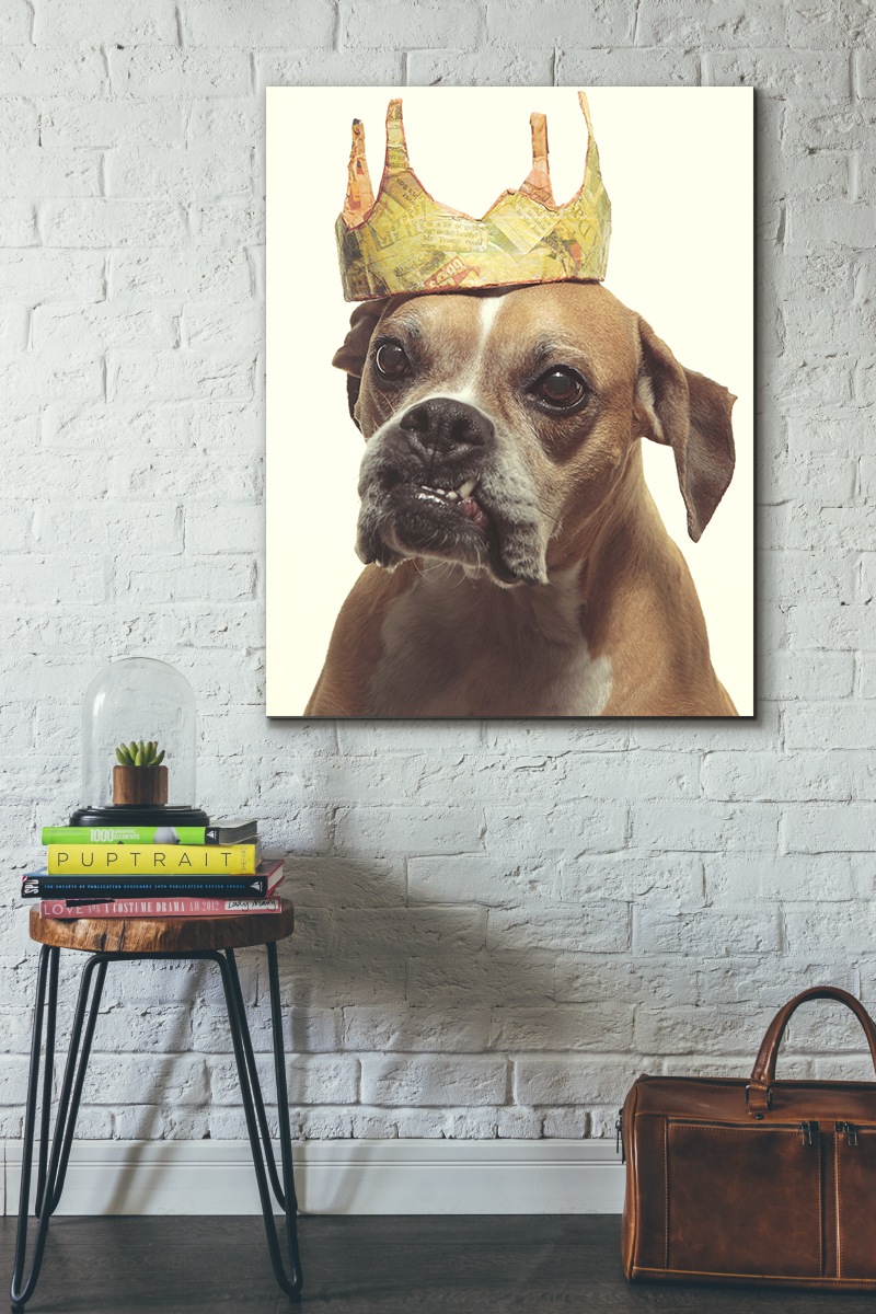 Photo of a pet art print hanging on a living room wall. The dog portrait features a fan boxer wearing a paper crown. Photographed at Puptrait located in Baltimore, Maryland.